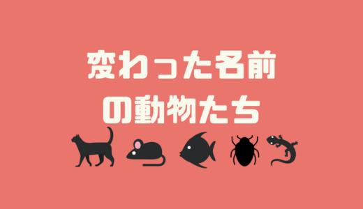 面白い名前・変な名前の動物たち【動物の名前の雑学】