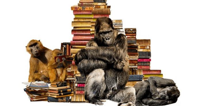 本を読んで勉強する動物たち