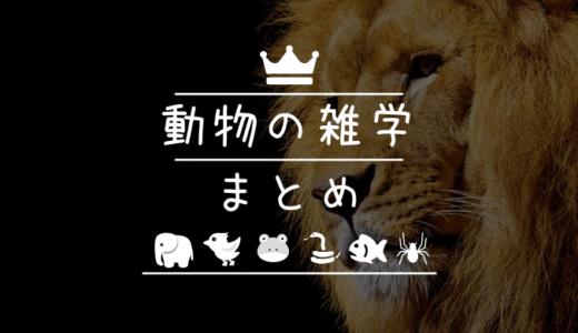 ライオンとその他の動物