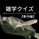 【動物クイズ】動物の知識が身につく三択問題(解説つき)