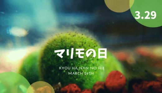 3月29日は何の日?「マリモの日」など、3月29日の記念日や出来事