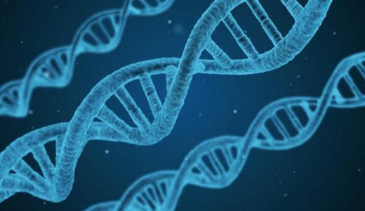 DNAの二重らせん構造